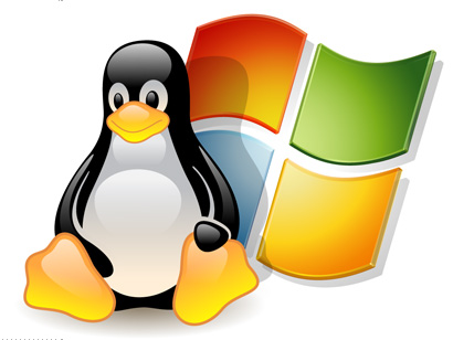 affordable web hosting in windows and linux servers.